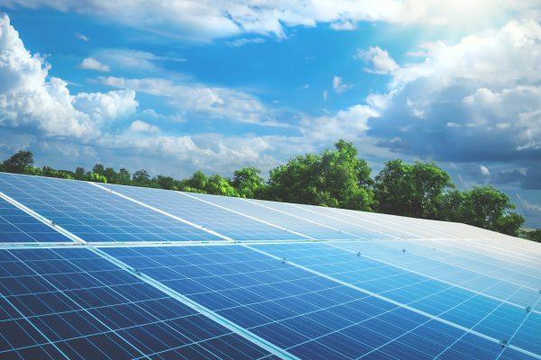 Solarmodule in Solarpark